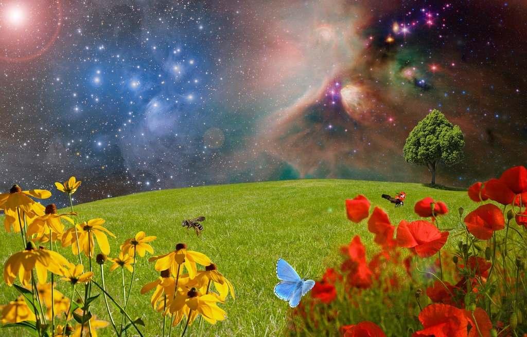 Szczęście-towarzyszy-mi-wszędzie-gdziekolwiek-się-udam-skosztuj-#flowRPRwdziecznosc